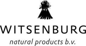 Witsenburg Logo.jpg
